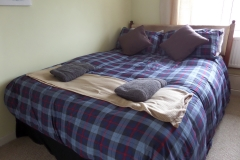 King size bed in family room